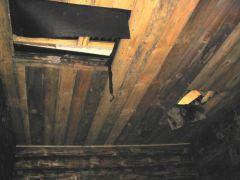 потолок  парной и моечной